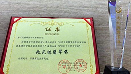 Day3持续高能!贝盛绿能荣获SNEC十大亮点评选兆瓦级翡翠奖!
